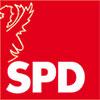 Gießen Kommunalwahl